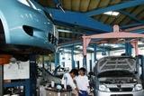lacima     la   201106 012.JPG