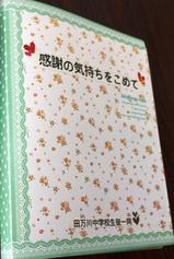 shimabukurosan   tamakawa 001.JPG